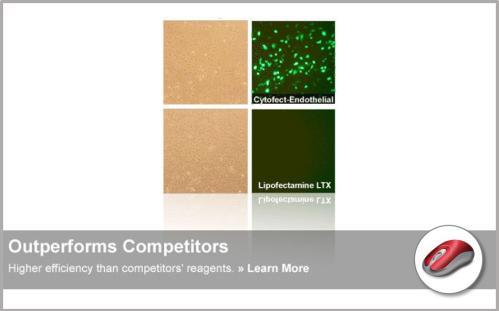 Cytofect™ Transfection Kits | High Quality